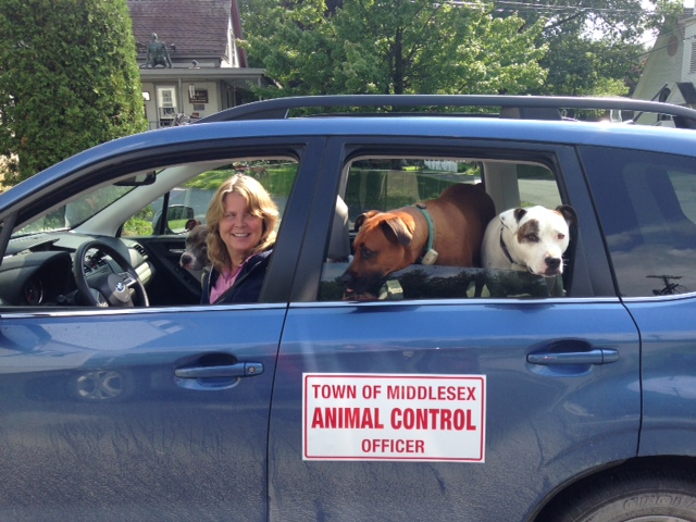 Middlesex's fantastic Animal Control Officer Erika Holm with some of her best friends!